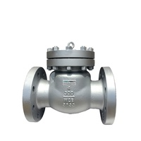 Swing Check Valve - WCB - Flanged ANSI 300LB